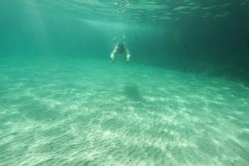 Սուզված լողալ